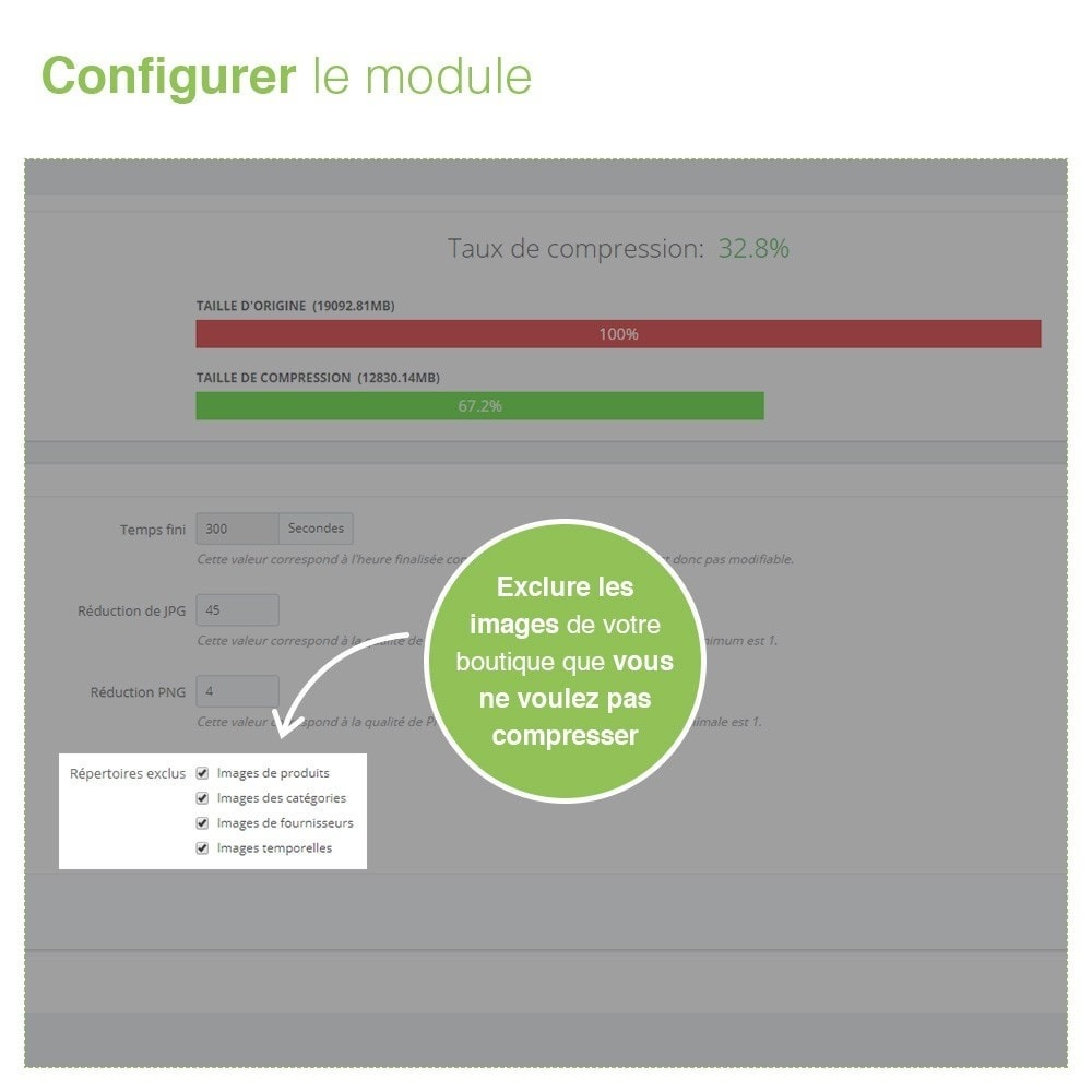 module - SEO (référencement naturel) - Image Compressor - Maximisez la Vitesse du Site - 4