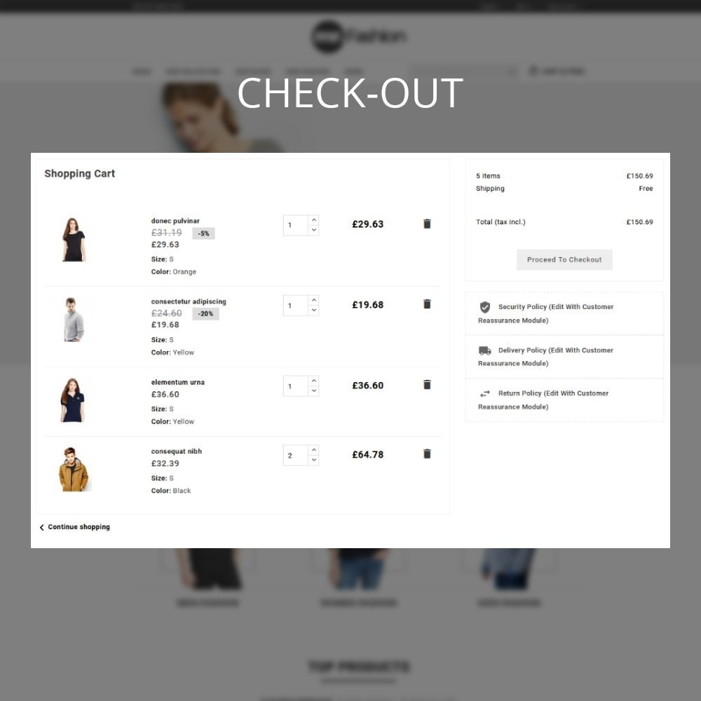 theme - Moda y Calzado - MR Fashion Store - 11