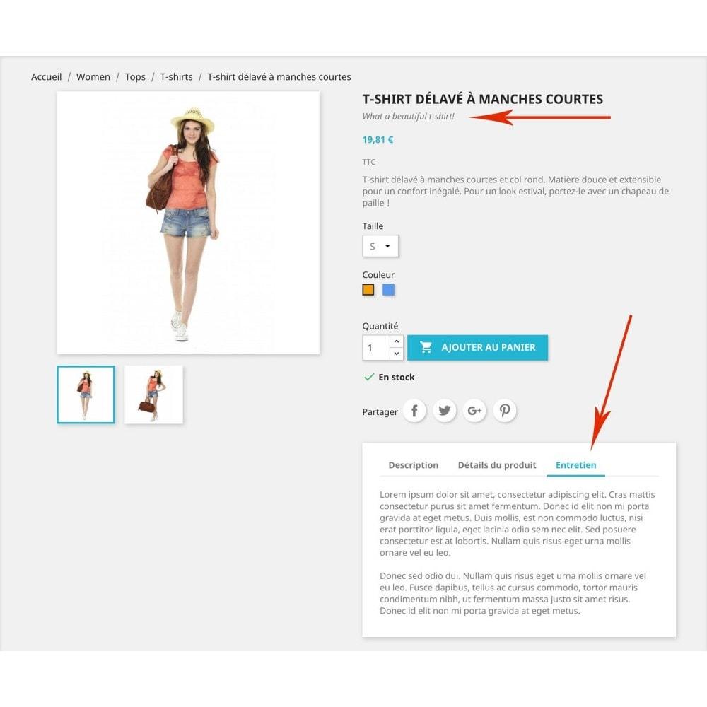 module - Informaciones adicionales y Pestañas - Otros campos para productos - 1