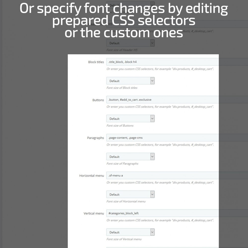 module - Page Customization - AN Google Fonts - 7