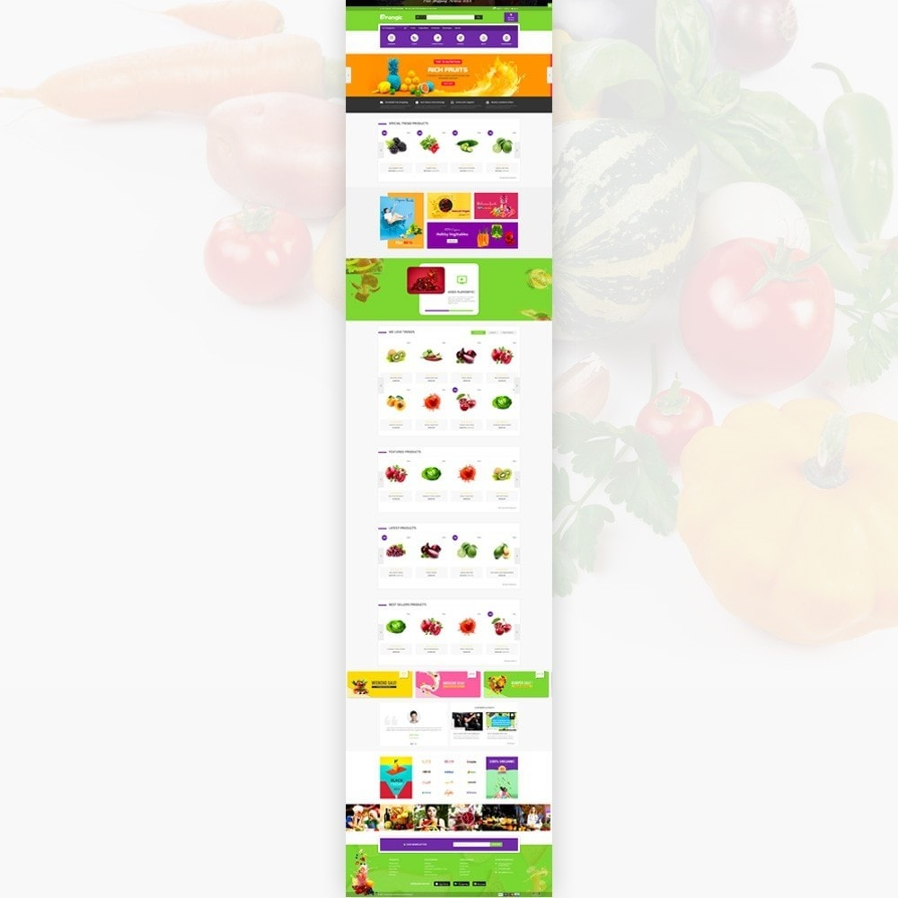 theme - Food & Restaurant - Orangic – Fresh Green Foods Super Store - 2