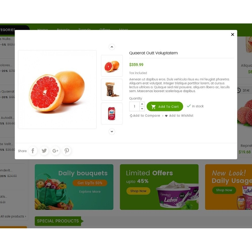 theme - Alimentos & Restaurantes - Mega Mart Grocery - 8