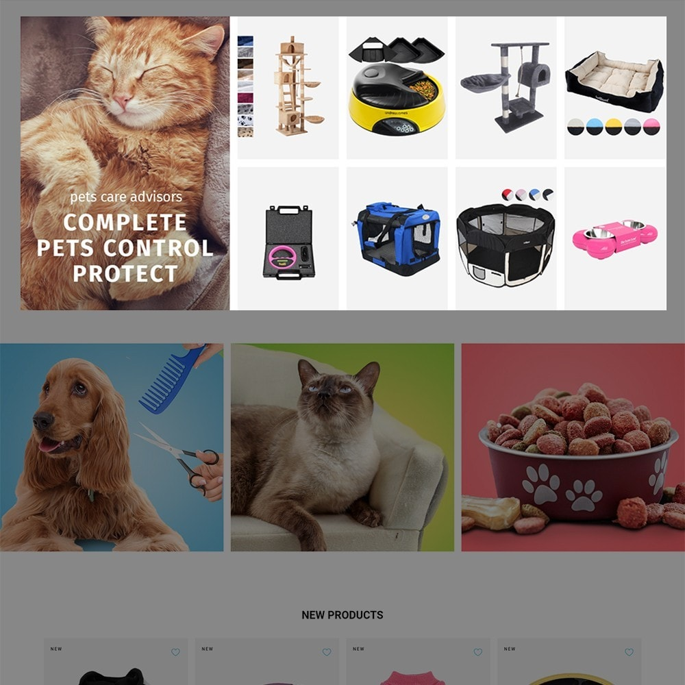 theme - Animais - Doggo - Pet Shop - 3
